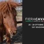 1521465369-fieracavalli-2018-where-to-sleep-to-sightseeing-verona
